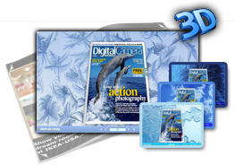 3D PageFlip Snow and frost Templates 1.0