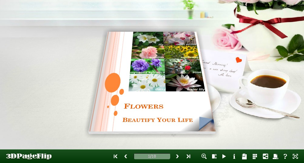 3D PageFlip Free Simple Life Templates 1.0