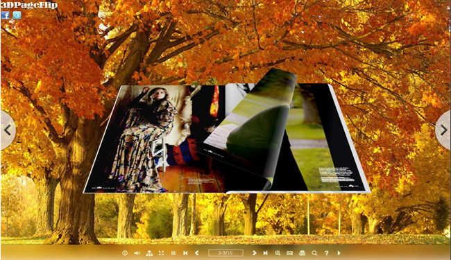 Maplewood Theme for 3D eBook